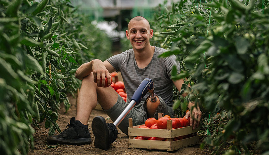 A young man with a prosthetic leg is sitting on the ground between rows of tomato plants. He is picking tomatoes and smiling